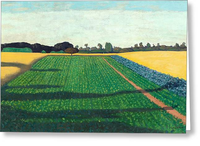 The Plateaus Greeting Cards - The Fields. Plateau of Red Cross Greeting Card by Felix Vallotton
