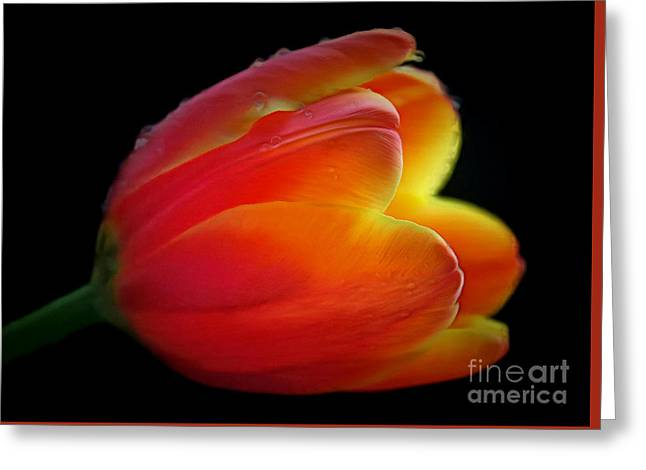 The Fire Within Greeting Card by Krissy Katsimbras
