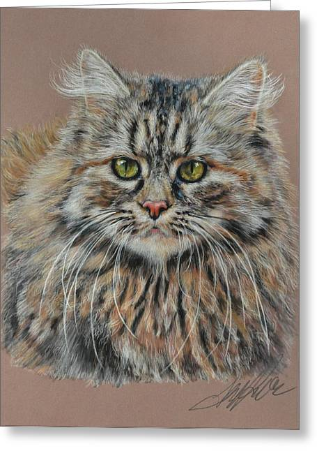 Maine Landscape Pastels Greeting Cards - The Fluffy Feline Greeting Card by Terry Kirkland Cook