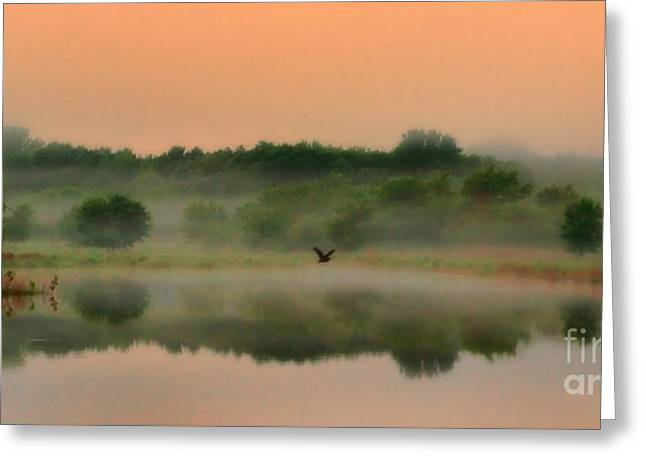 Chalco Hills Recreation Area Greeting Cards - The Fog of Summer Greeting Card by Elizabeth Winter