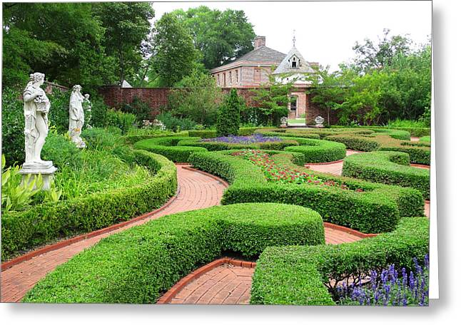 Garden Art Greeting Cards - The Garden 3 Greeting Card by Mike McGlothlen