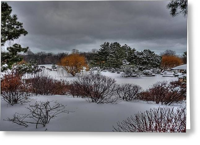 Desperate Greeting Cards - The Garden in Winter Greeting Card by David Bearden