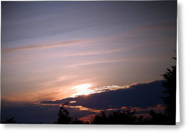 Gloaming Greeting Cards - The Gathering Greeting Card by Wild Thing
