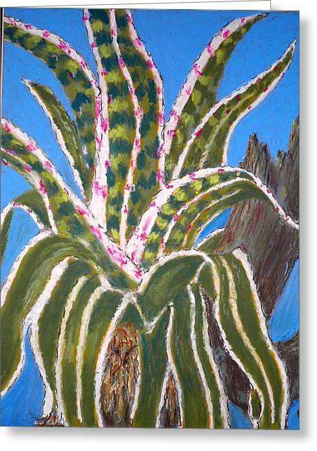 Bromeliad Pastels Greeting Cards - The General 2 Greeting Card by Curt Peifley