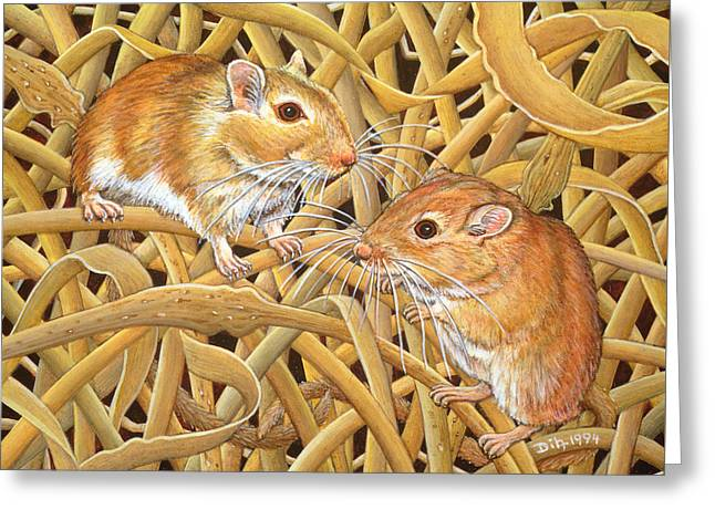 Rodent Greeting Cards - The Gerbils Greeting Card by Ditz