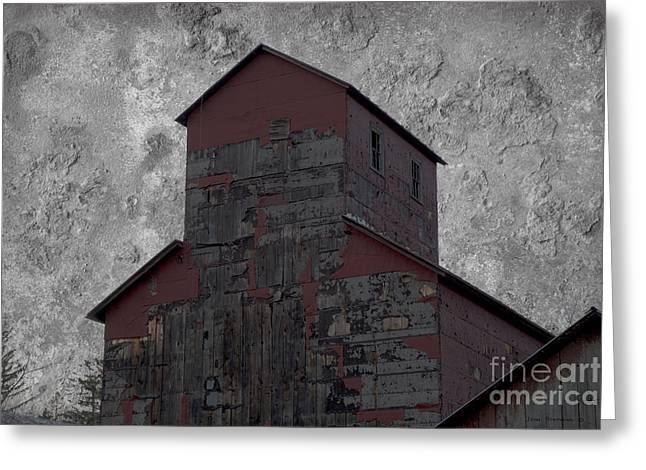 Old Mills Photographs Greeting Cards - The Gift Of Decay Greeting Card by John Stephens