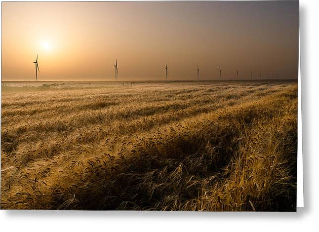 Wheat Greeting Cards - The Gifts Of Nature Greeting Card by Electriciron