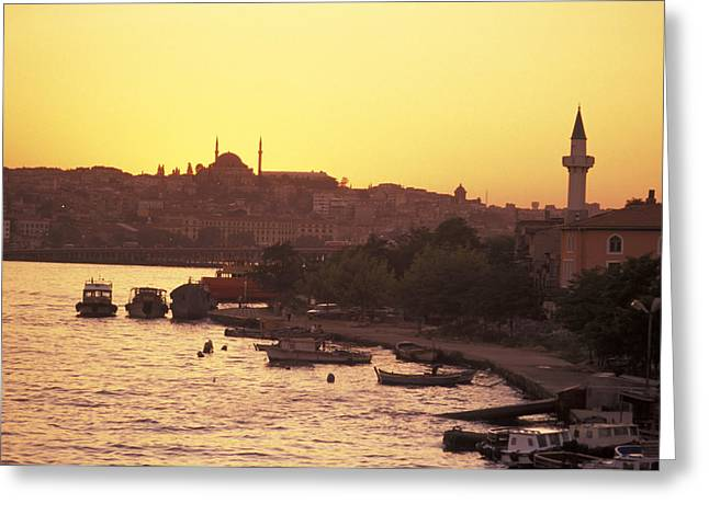 Golden Horn Greeting Cards - The Golden Horn On The Bosporus Greeting Card by Richard Nowitz