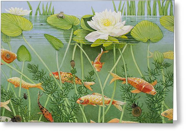 Goldfish Paintings Greeting Cards - The Golden Touch Greeting Card by Pat Scott