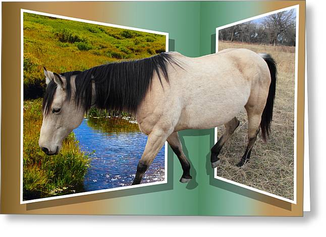 Mane Mixed Media Greeting Cards - The Grass Is Always Greener On The Other Side Greeting Card by Shane Bechler