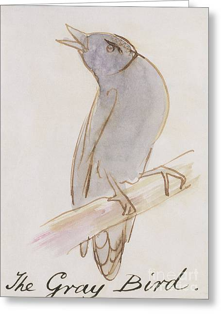 The Gray Bird Greeting Card by Edward Lear