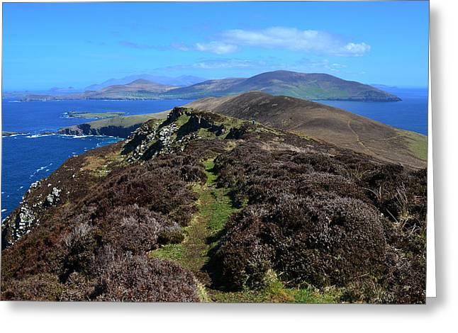 Sea View Greeting Cards - The Great Blasket Island Greeting Card by Barbara Walsh