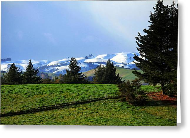 Winter Storm Greeting Cards - The Green Green Grass Of Winter Greeting Card by Karen Wood