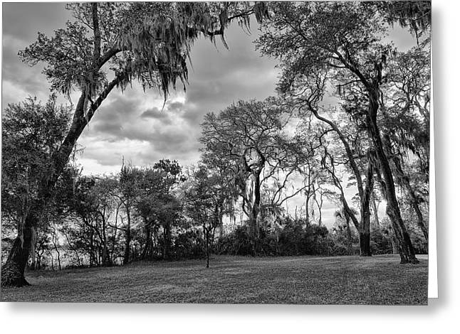 Recently Sold -  - Jacksonville Greeting Cards - The Grounds of Fort Caroline National Memorial Greeting Card by John Bailey