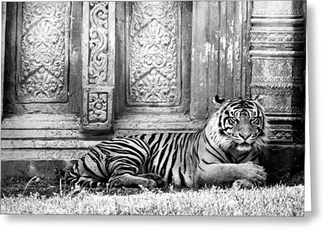 The Tiger Greeting Cards - The Guardian Greeting Card by Lynn Palmer