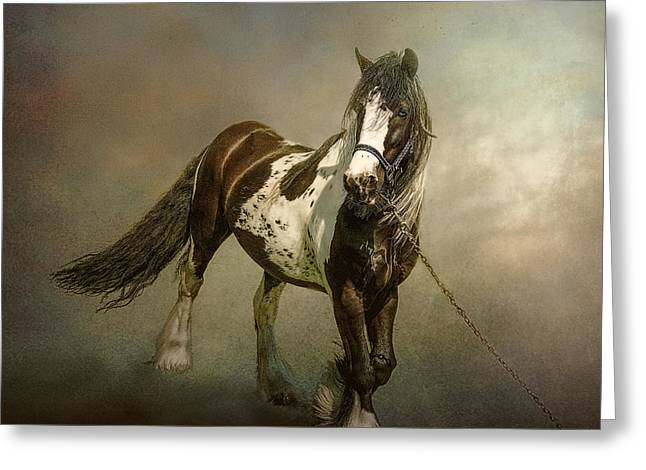 Gypsy Greeting Cards - The Gypsys Horse Greeting Card by Brian Tarr