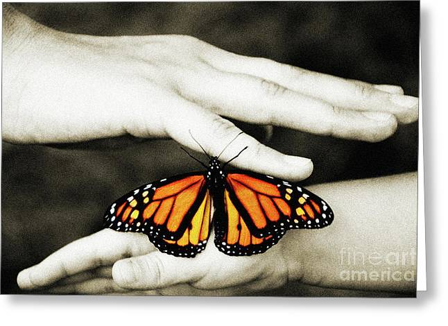 Orange And Brown Wings Digital Greeting Cards - The Hands And The Butterfly Greeting Card by Andee Design