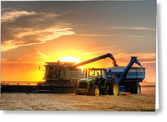 Grain Greeting Cards - The Harvest Greeting Card by Thomas Zimmerman