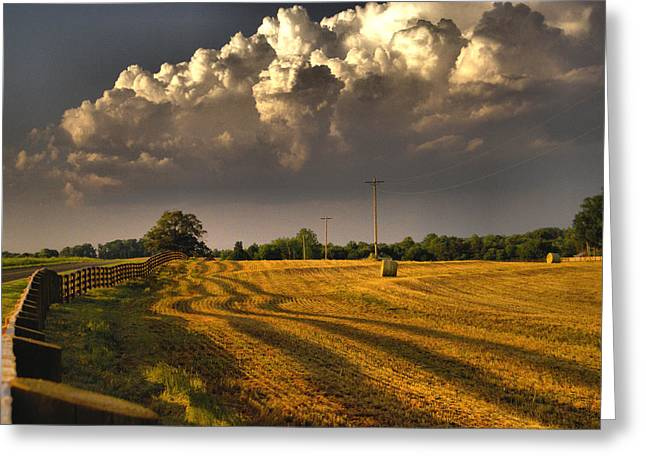 Farmlife Greeting Cards - The Hayfield Greeting Card by David Walsh