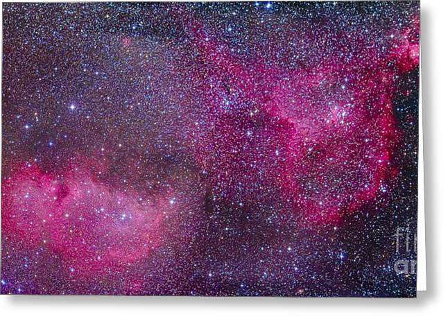 Heart Nebula Greeting Cards - The Heart And Soul Nebulae Greeting Card by Alan Dyer