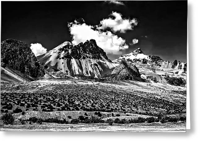 The High Andes Monochrome Greeting Card by Steve Harrington