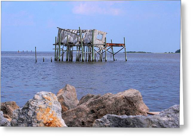 Cedar Key Greeting Cards - THE HONEY MOON SUITE 2 - debbie may - phtosbydm Greeting Card by Debbie May