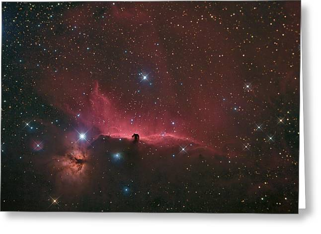 Charles Warren Greeting Cards - The Horsehead Nebula Greeting Card by Charles Warren