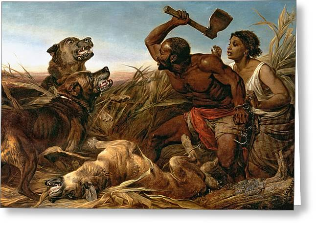 Freed Paintings Greeting Cards - The Hunted Slaves Greeting Card by Richard Ansdell