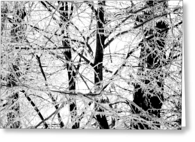 Fantasy Tree Greeting Cards - The Ice Queens Garden Greeting Card by Susan Maxwell Schmidt