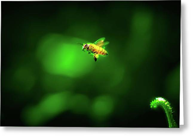 The Incredible Journey Of Mrs. Honeybags Greeting Card by Mark Andrew Thomas
