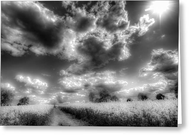 Farmers Field Greeting Cards - The Infrared Farm Greeting Card by David Pyatt