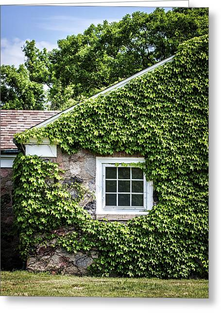 The Ivy House Greeting Card by Kim Hojnacki