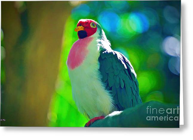 Fruit Tree Art Greeting Cards - The Jambu Fruit Dove Greeting Card by Judy Kay