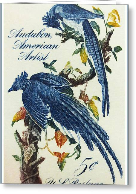Recently Sold -  - Tears Greeting Cards - The John James Audubon stamp Greeting Card by Lanjee Chee