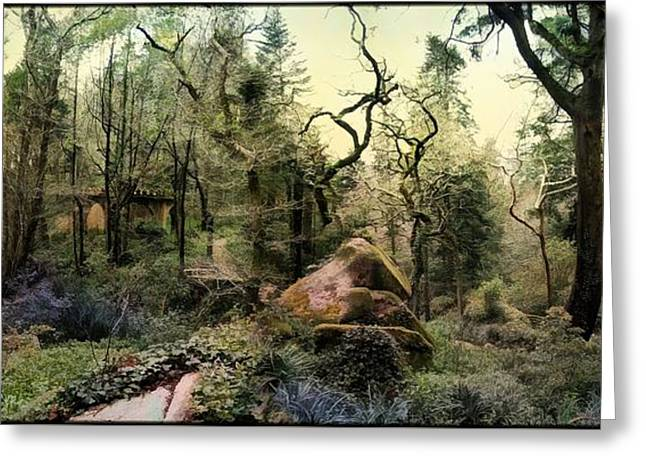 Mystic Art Greeting Cards - The Kings Forest Greeting Card by Daniel  Arrhakis
