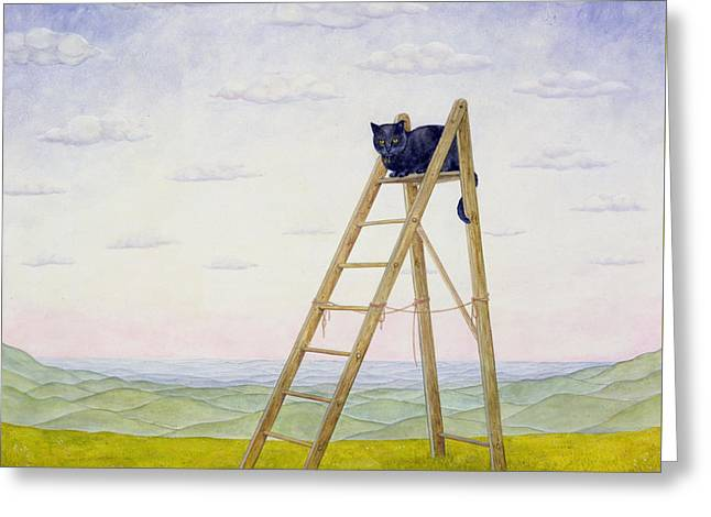 On Top Greeting Cards - The Ladder Cat Greeting Card by Ditz