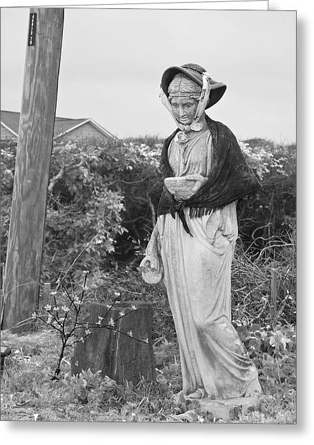 Fun Image Greeting Cards - The Lady of Topsail Greeting Card by Betsy A  Cutler