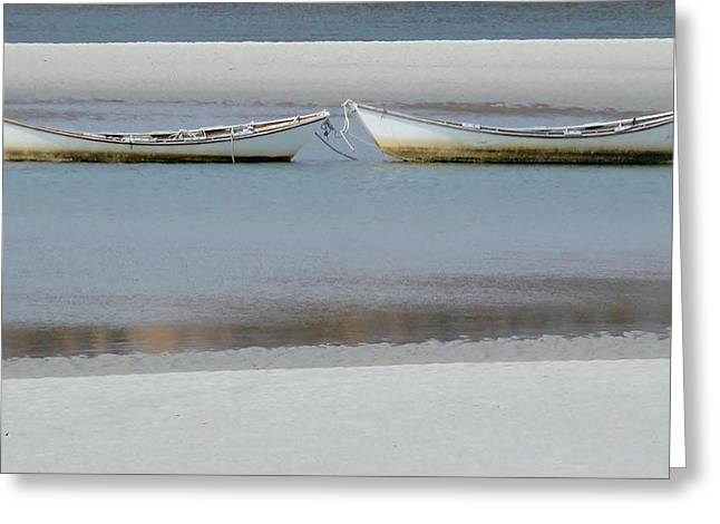 Owner Greeting Cards - The Lagoon Greeting Card by Allen Foley
