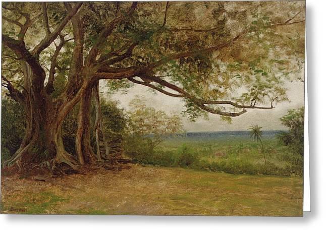 The Landing of Columbus Greeting Card by Albert Bierstadt