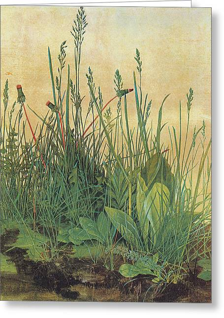 Master Piece Greeting Cards - The Large Piece of Turf Greeting Card by Albrecht Durer