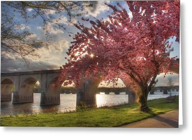 Photomatix Pro Greeting Cards - The Last Glimmer Greeting Card by Lori Deiter