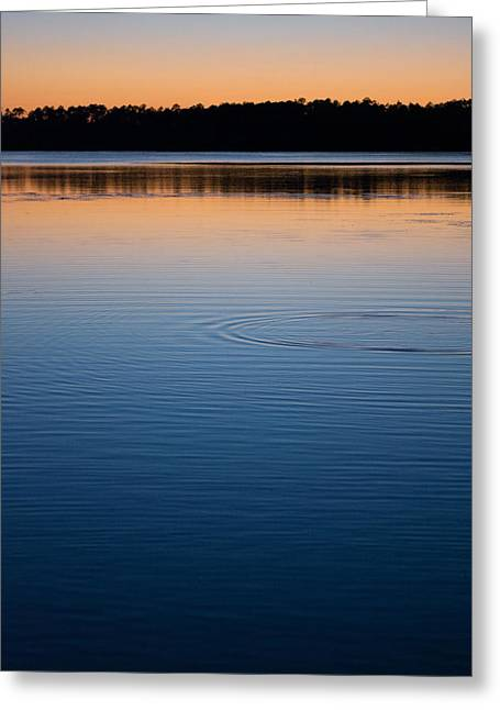Colorful Photos Greeting Cards - The Last Light Greeting Card by Parker Cunningham