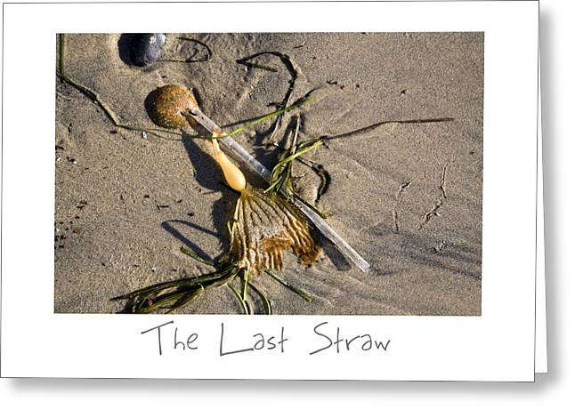 Sand Art Greeting Cards - The Last Straw Greeting Card by Peter Tellone