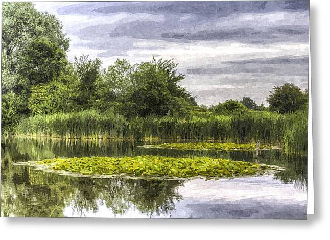S Lily Greeting Cards - The Lily Pond Greeting Card by David Pyatt