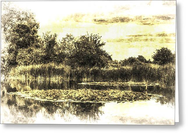 S Lily Greeting Cards - The Lily Pond Vintage Greeting Card by David Pyatt