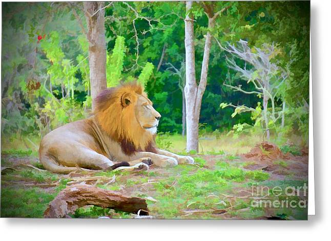 Jungle Greeting Cards - The Lion King Greeting Card by Judy Kay