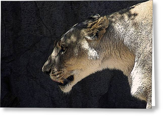 The Lioness Greeting Card by Ernie Echols