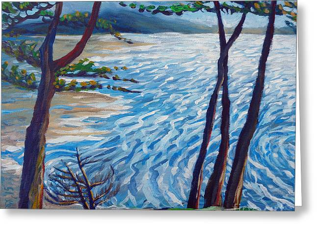 Sonoma County Paintings Greeting Cards - The Little Cypress Greeting Card by Vanessa Hadady BFA MA