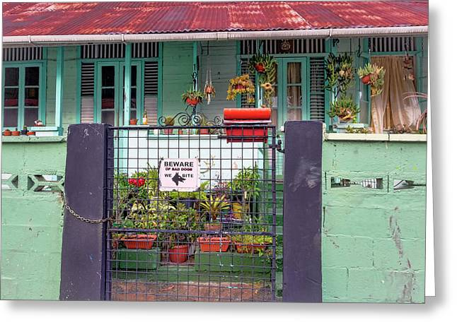 Tin Roof Greeting Cards - The Little Green House Greeting Card by Nadia Sanowar