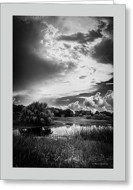 The Little Pond Greeting Card by Marvin Spates